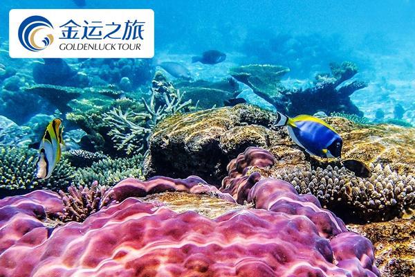 【Manado・体验游】美娜多.布纳肯岛屿.体验浮潜.亚洲第一耶稣像.7日精彩之旅