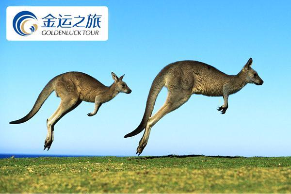 《爱的行走之南半球去撒欢儿》澳大利亚(悉尼、墨尔本、黄金海岸、布里斯班)+新西兰11日双船揽胜之旅【沈阳起止.女皇号游船+悉尼晚餐游船】