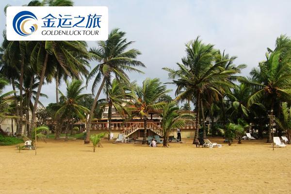 《初见锡兰》斯里兰卡9日休闲之旅