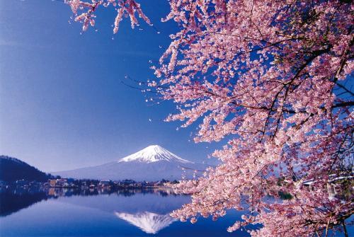 【古都风情】名古屋、箱根、东京、奈良、京都、大阪7日(名阪7日)