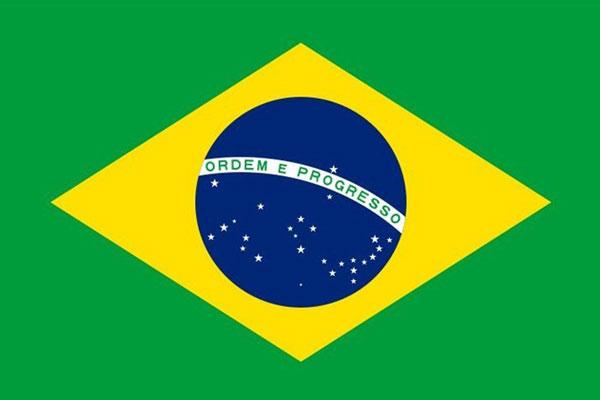 巴西个人旅游签证