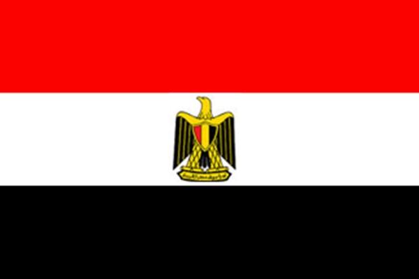 埃及个人旅游签证